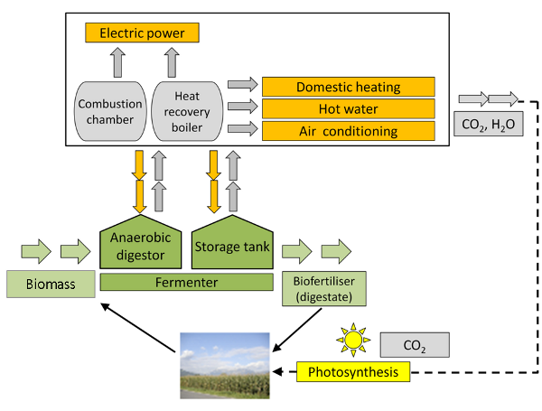 Biogas -> power and heat